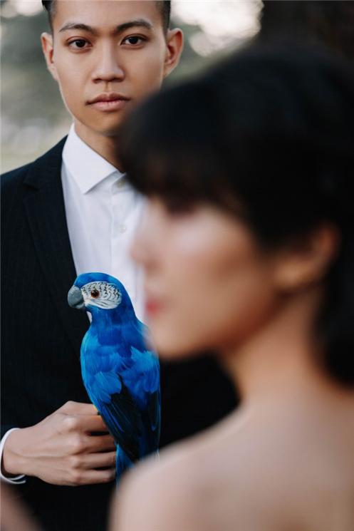 HeydayStudio_悉尼婚纱摄影_悉尼婚纱照_悉尼婚纱旅拍_YongcongShiyun_29.jpg