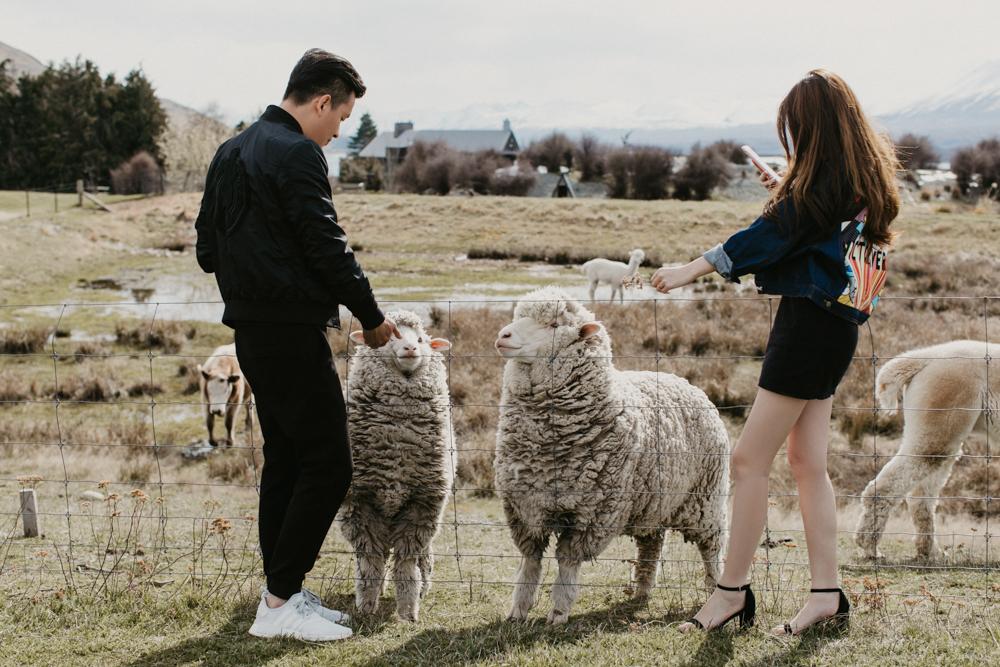 TheSaltStudio_新西兰婚纱摄影_新西蘭婚紗攝影_新西兰婚纱旅拍_AnnaGeorge_20.jpg