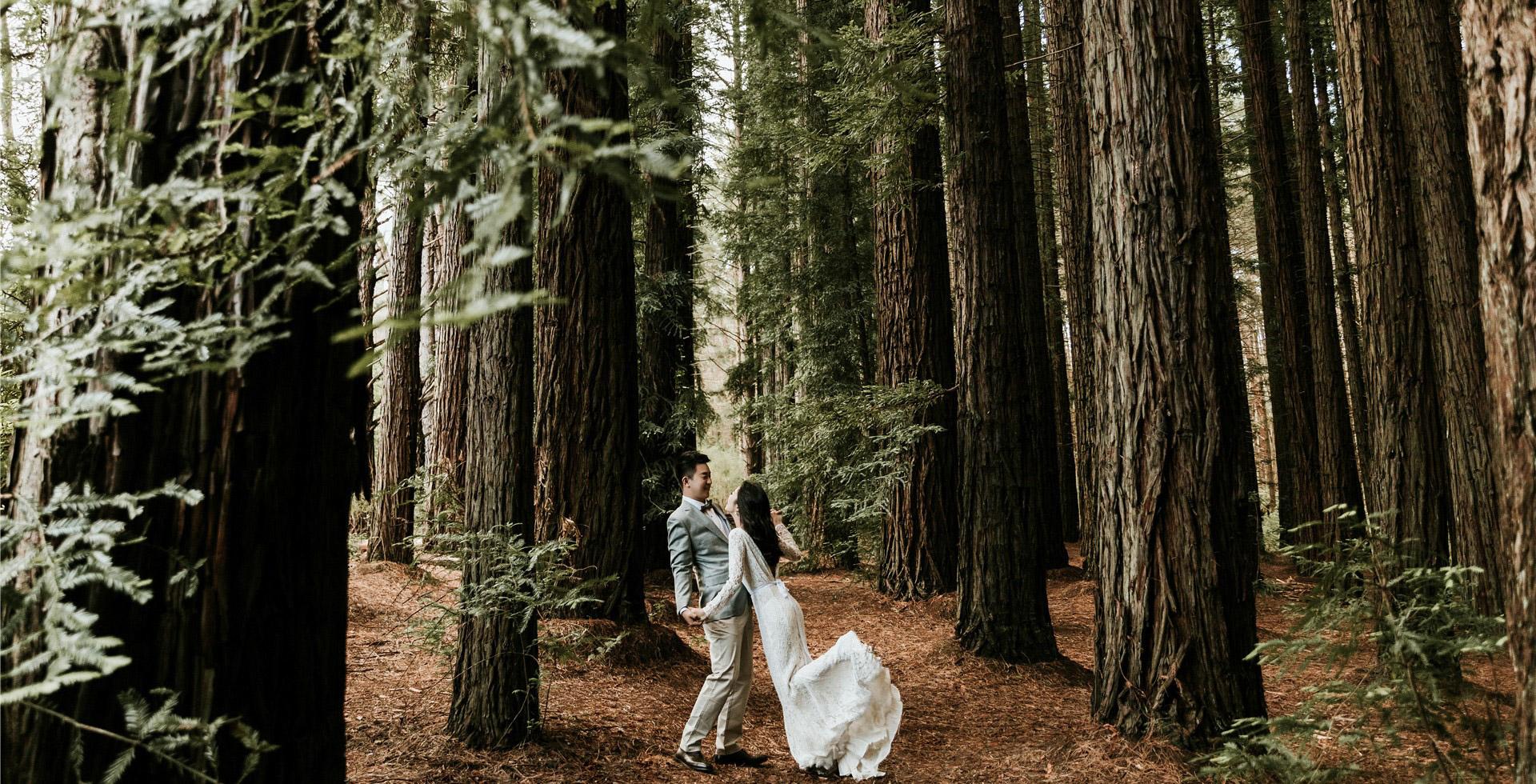 悉尼蓝山国家公园,小清新婚纱摄影,悉尼婚纱旅拍,澳洲婚纱旅拍摄影,小清新旅拍婚纱照,悉尼化妆造型