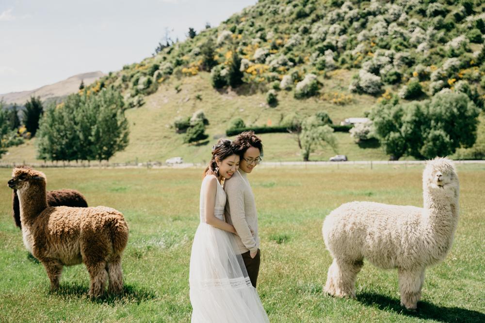 TheSaltStudio_新西兰婚纱摄影_新西兰婚纱照_新西兰婚纱旅拍_LynetteKai_71.jpg