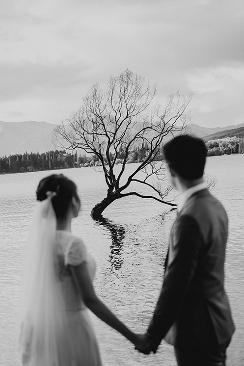 TheSaltStudio_新西兰婚纱摄影_新西兰婚纱照_新西兰婚纱旅拍_VianWilliam_13.jpg