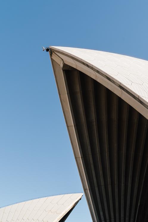 TheSaltStudio_悉尼婚纱摄影_悉尼婚纱照_悉尼婚纱旅拍_KatherineAlex_13.jpg