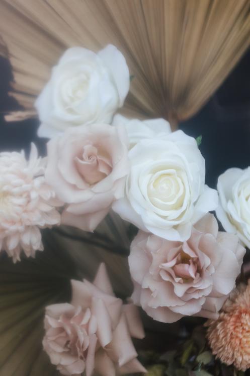 TheSaltStudio_悉尼小型婚礼_悉尼订婚仪式_悉尼小型结婚仪式_YvetteAaron_26.jpg